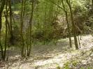 Wanderweg Odel's Uwe_17