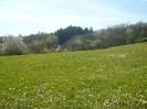 Wanderweg Odel's Uwe_8